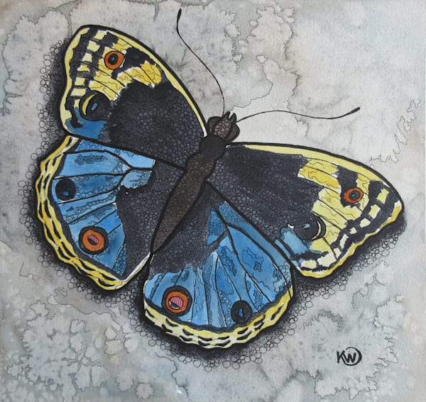 Blue/Yellow Butterfly