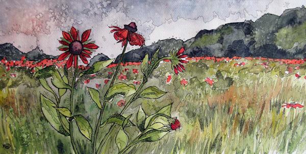 Crimson Daisies Art | Water+Ink Studios