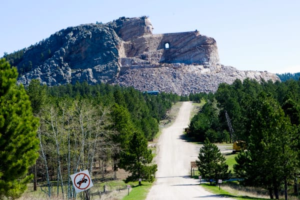 Crazy Horse  Art | DocSaundersPhotography