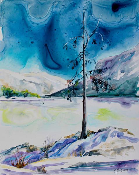 Lonely Tree at Lake Minnewanka
