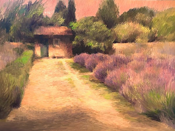 Lavender And Garden Shed In St Remy Art by fountainhead