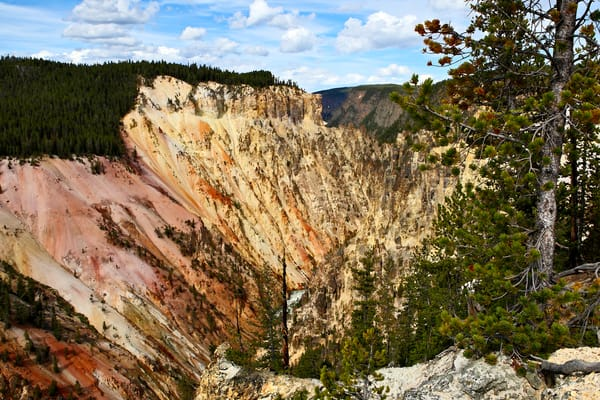 Grand Canyon Of Yellowstone Artist Point Art | DocSaundersPhotography