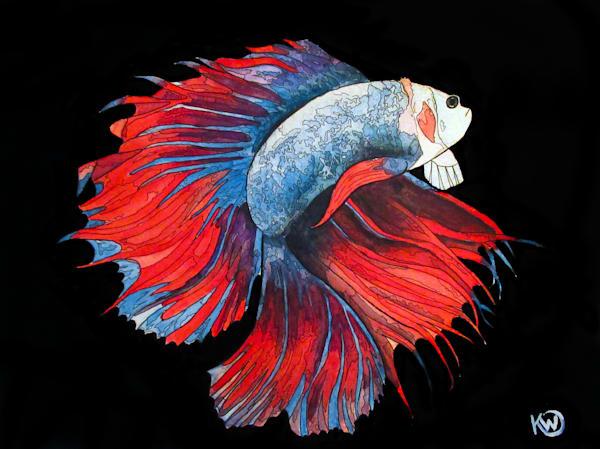 Betta Fish Art | Water+Ink Studios
