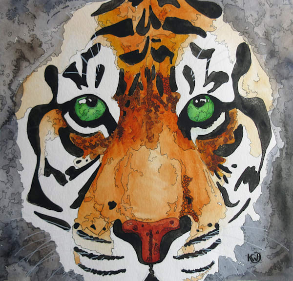 Face of a Tiger