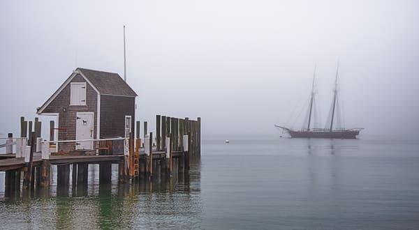 Vineyard Haven Harbor Winter Fog