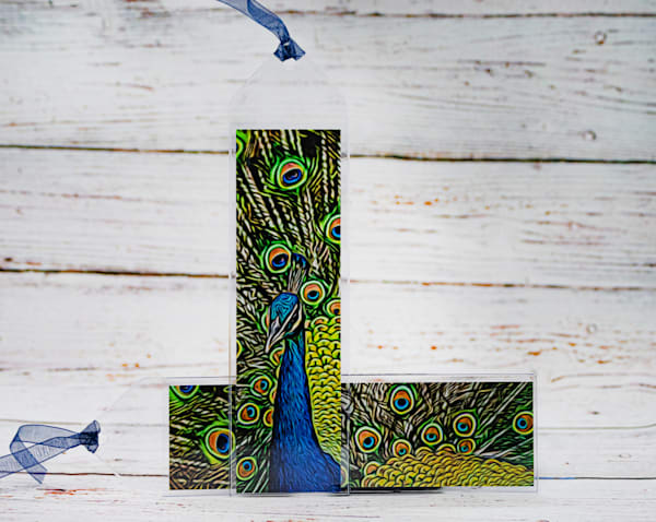 Peacock Bookmark | draphotography