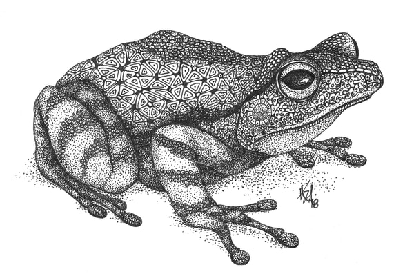"""Frog by Kristin Moger """"Seriously Fun Art"""""""