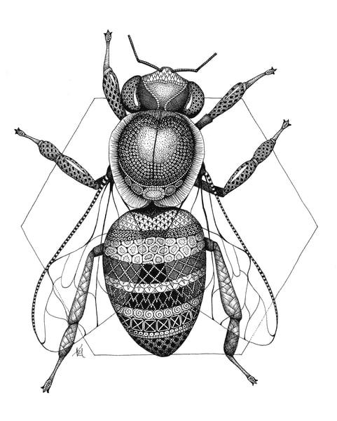 "Honey Bee | Kristin Moger ""Seriously Fun Art"""