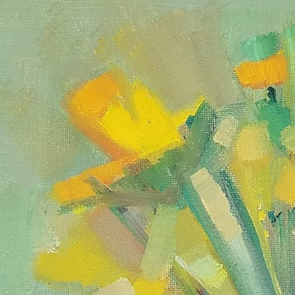 Daffodil, Flower, Yellow, Spring
