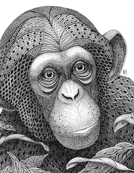 "Chester Chimp by Kristin Moger ""Seriously Fun Art"""