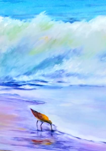 Sandpiper, From an Original Oil Painting