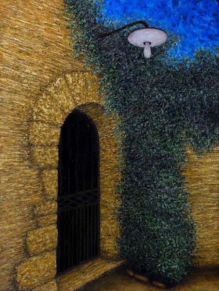 Porte d arche couvert de lierre a Menerbes