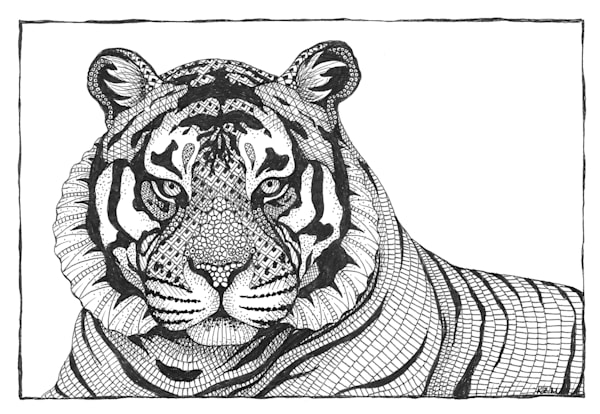 "Tiger | Kristin Moger ""Seriously Fun Art"""