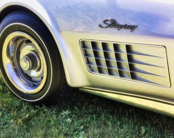 Classic Silver Stingray