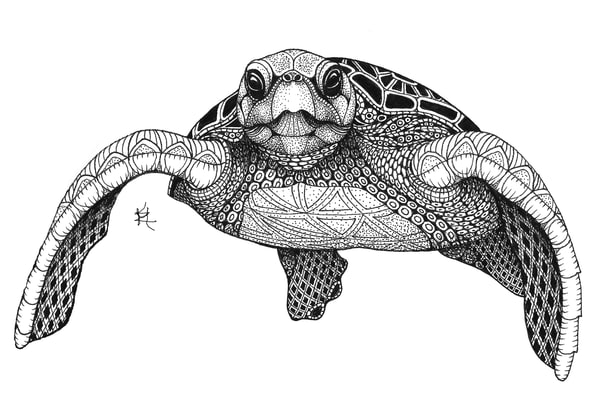 "Sea Turtle (Front) by Kristin Moger ""Seriously Fun Art"""
