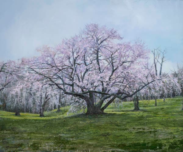 Springtime by Holly Schapker.