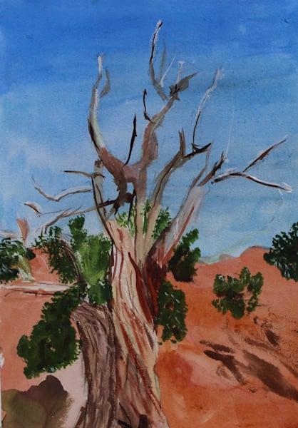 Howard Lawrence Fine Art - Sedona Tree