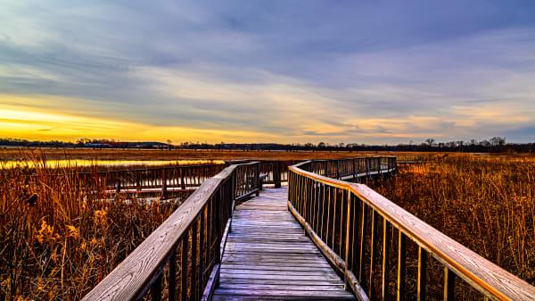 Baker Wetlands Photography Art | Silver Spirit Photography