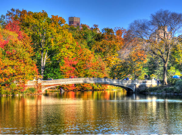 Central Park 6 Photography Art   mikelindwasserphotography