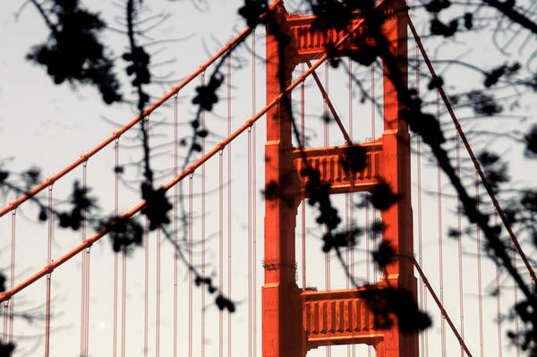 Bridge 24 Photography Art | mikelindwasserphotography