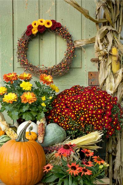 Lititz Autumn Colors Still Life