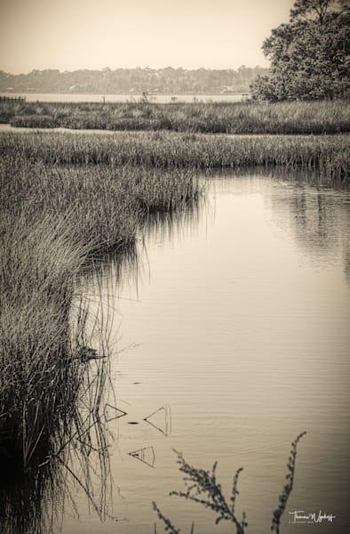 Foggy Lagoon II, Baldwin County, 2020