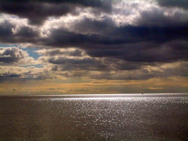 Toronto Lake Art | DocSaundersPhotography