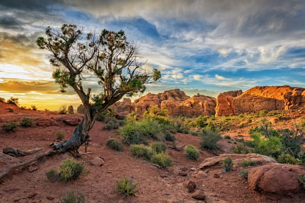Sunset in Moab | Shop Photography by Rick Berk