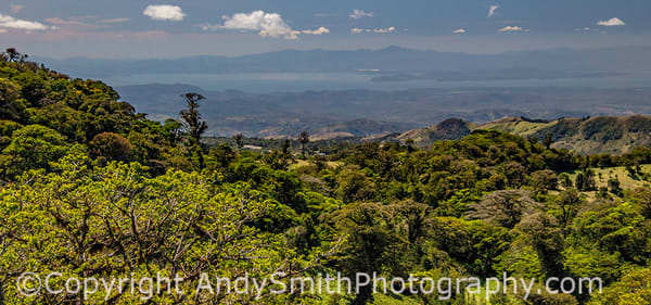 fine art photograph of the view from the Tram in the Cloud Forest in Monteverde