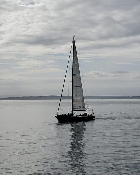 Seattle Sailing Art   Bellz Artistry