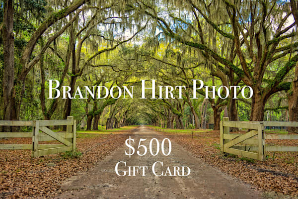 $500 Gift Card | Brandon Hirt Photo