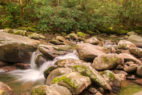 Summer Stream Photography Art | draphotography