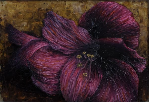 Fleur D'amaryllis Du Jardin De Ma Mère à Claviers Art | Fountainhead Gallery