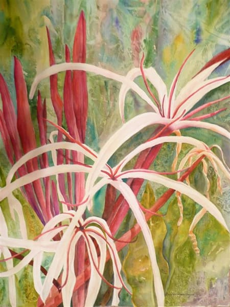 Spider Lily, From an Original Watercolor Painting