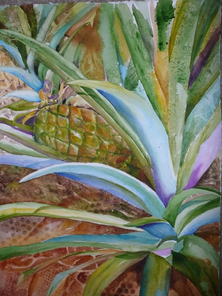 Baby Pineapple, From an Original Watercolor Painting