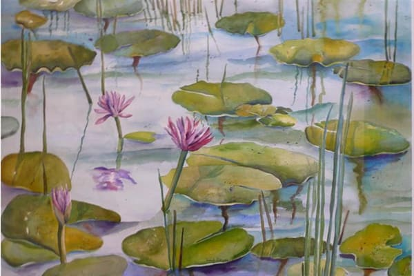 African Waterlilies, From an Original Watercolor Painting