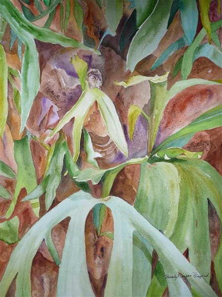 Staghorn Fern, From an Original Watercolor Painting