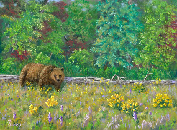 Grizzly Spring Debut Art | Mark Grasso Fine Art