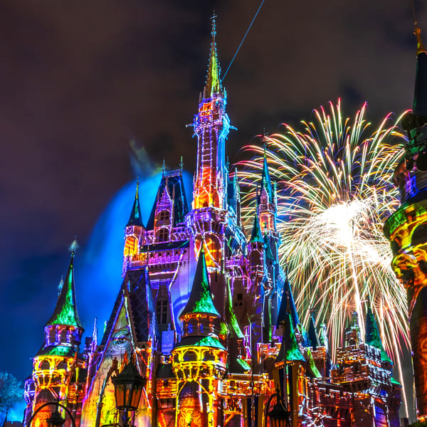 Happily Ever After 59 - Disney World Photographs
