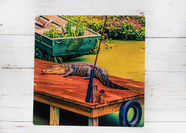 Down In The Bayou Metal Print