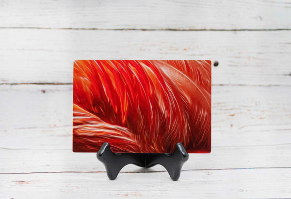Flamingo Flair Metal Print