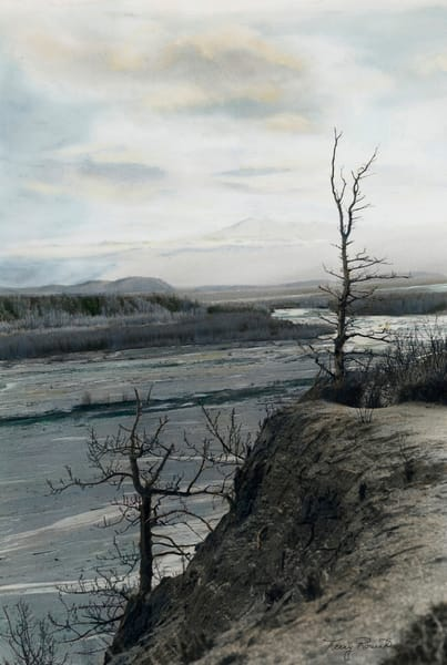 Sentry Guarding Braided Rivers in Alaska by Terry Rosiak