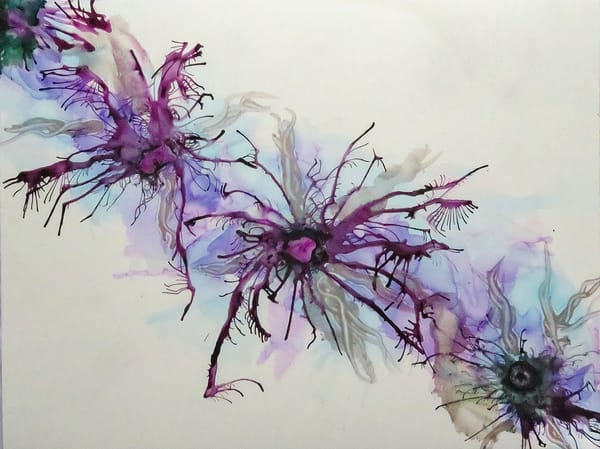 Violet Spider Flower, an Abstract by Terry Rosiak