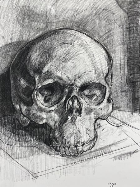 Skull V.7 Art | Matt Pierson Artworks