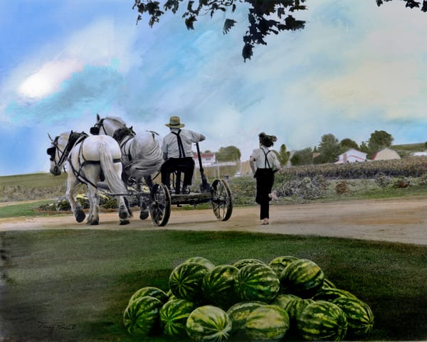 Watermelons and an Amish Boy by Terry Rosiak