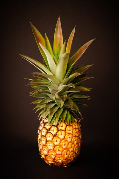 White Pineapple King