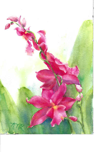 #4  Orchid Art | Nancy Reyna Fine Art