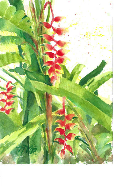 #5  Heliconia Art | Nancy Reyna Fine Art