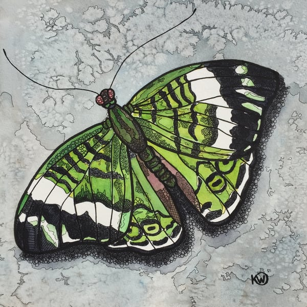 Emerald Butterfly Art | Water+Ink Studios