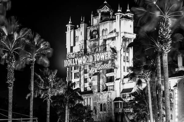 Tower of Terror at Hollywood Studios Black and White - Disney Art